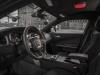 2015 Dodge Charger Pursuit-10