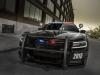 2015 Dodge Charger Pursuit-4
